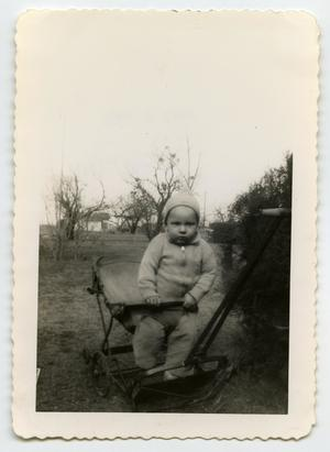 Primary view of object titled '[Photograph of a Small Child in a Stroller]'.