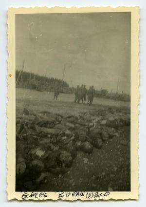 Primary view of object titled '[Bodies at Buckenwald]'.