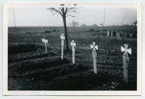 Primary view of object titled '[Photograph of Graves in Germany]'.