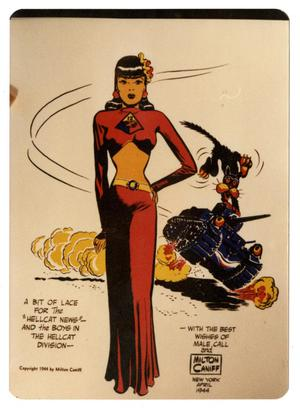 Primary view of object titled '[Photograph of Hellcats Lady Comic]'.