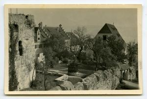 Primary view of object titled '[Photograph of Castle Complex]'.