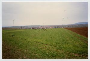 Primary view of object titled '[Photograph Overlooking Bullenheim]'.