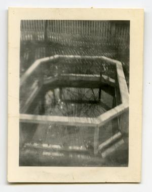Primary view of object titled '[Photograph of Garden]'.