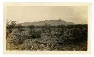 Primary view of object titled '[Photograph of Rim Rock from Johnson's Ranch]'.