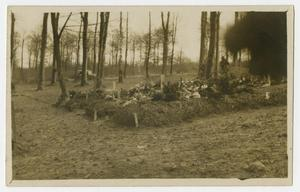 [Photograph of a Military Grave Site]