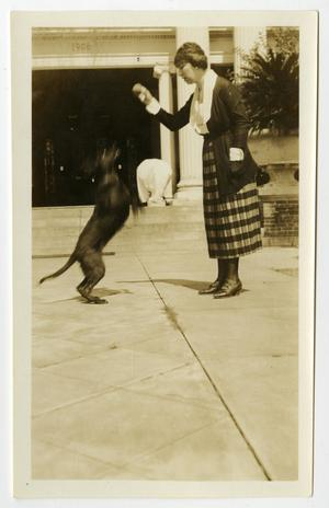 Primary view of object titled '[Photograph of Mamie McFaddin Ward Training Dog]'.