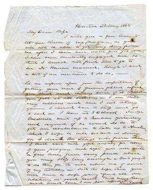 Primary view of object titled '[Correspondence from E.M. Pease to Lucadia Pease]'.