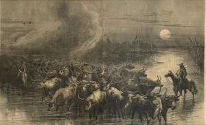 "Primary view of object titled '[Print from Harper's Weekly, October 19, 1867. ""A Drove of Texas Cattle Crossing a Stream""]'."
