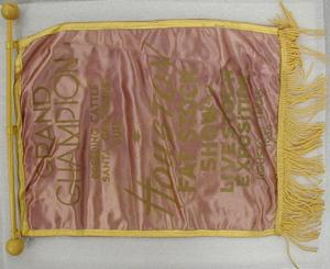 Primary view of object titled '[Mauve banner with yellow border]'.