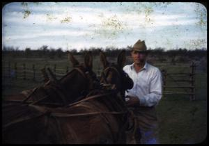 Primary view of object titled '[Bill Couger with Two Mules]'.