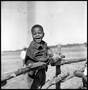 Primary view of object titled '[Boy Standing on a Fence]'.