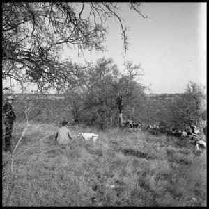 [Men and a Dog on Ranch Land]