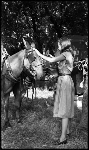 [Young Woman Touching Mules]