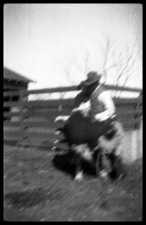 [Blurred Man and Toddler with a Calf]
