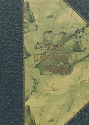 Primary view of object titled 'The Bronco, Yearbook of Denton High School, 1911'.