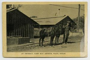 [Postcard of Soldier and Horses]