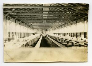 [Photograph of Camp MacArthur Mess Hall]
