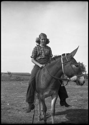 Primary view of object titled '[Young Woman Riding a Mule]'.