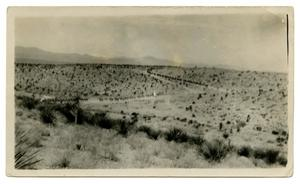 [Photograph of Soldiers Riding in Long Line]
