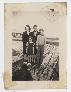 Primary view of object titled '[Photograph of Dolly Nelson Arnold and Family]'.