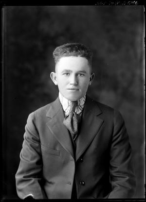 Primary view of object titled '[Single Pose of Young Man]'.