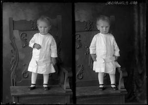 Primary view of object titled '[Portraits of Child Standing in Chair]'.