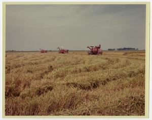 Primary view of object titled '[Tractors in Field]'.