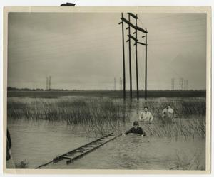 Primary view of object titled '[Men in Water by Power Lines]'.