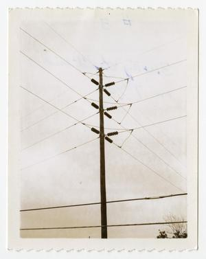 Primary view of object titled '[Power Lines Connected to Utility Pole #5]'.