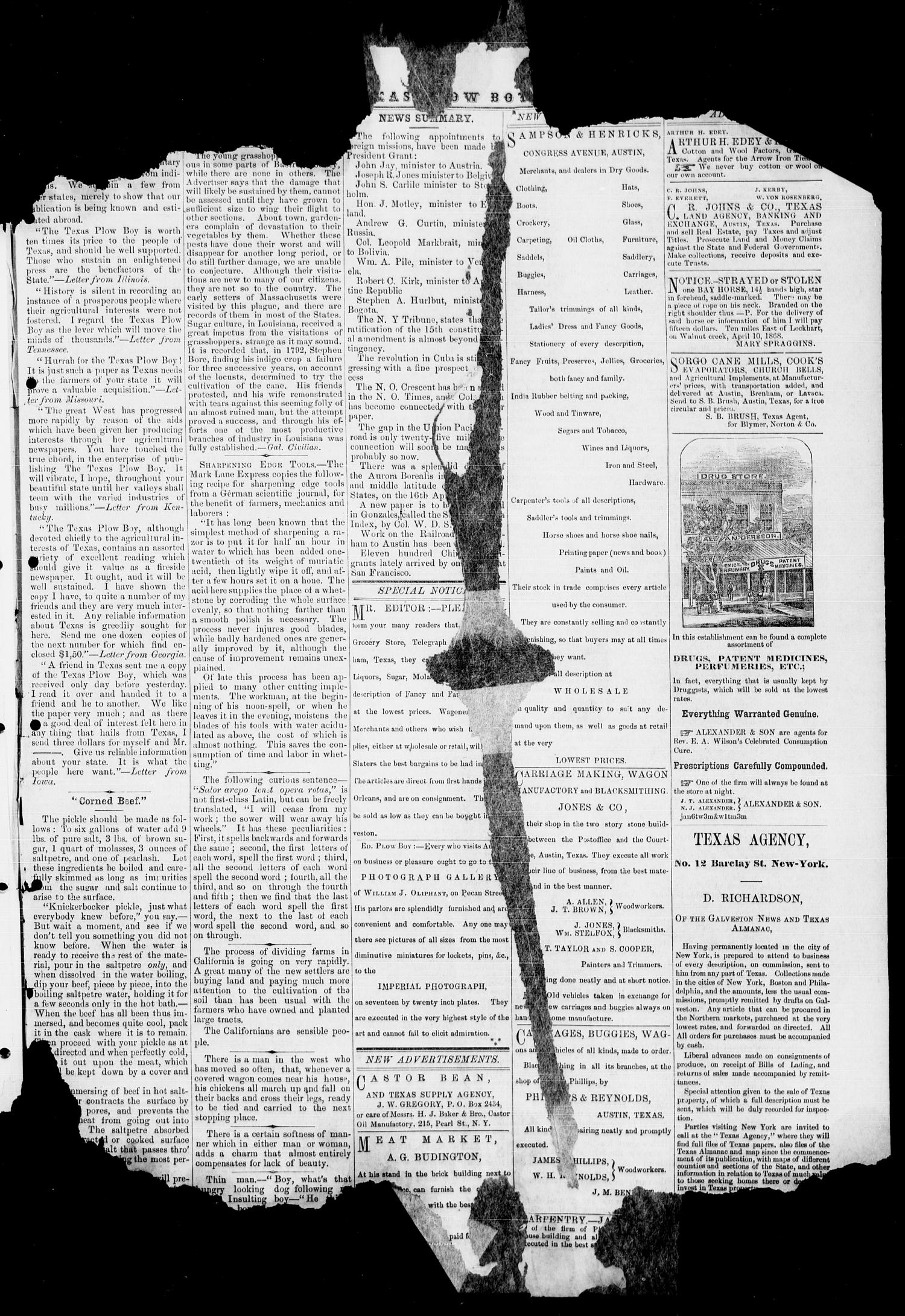 The Plow Boy (Austin, Tex.), Vol. 1, No. 5, Ed. 1, Saturday, May 1, 1869                                                                                                      [Sequence #]: 7 of 8