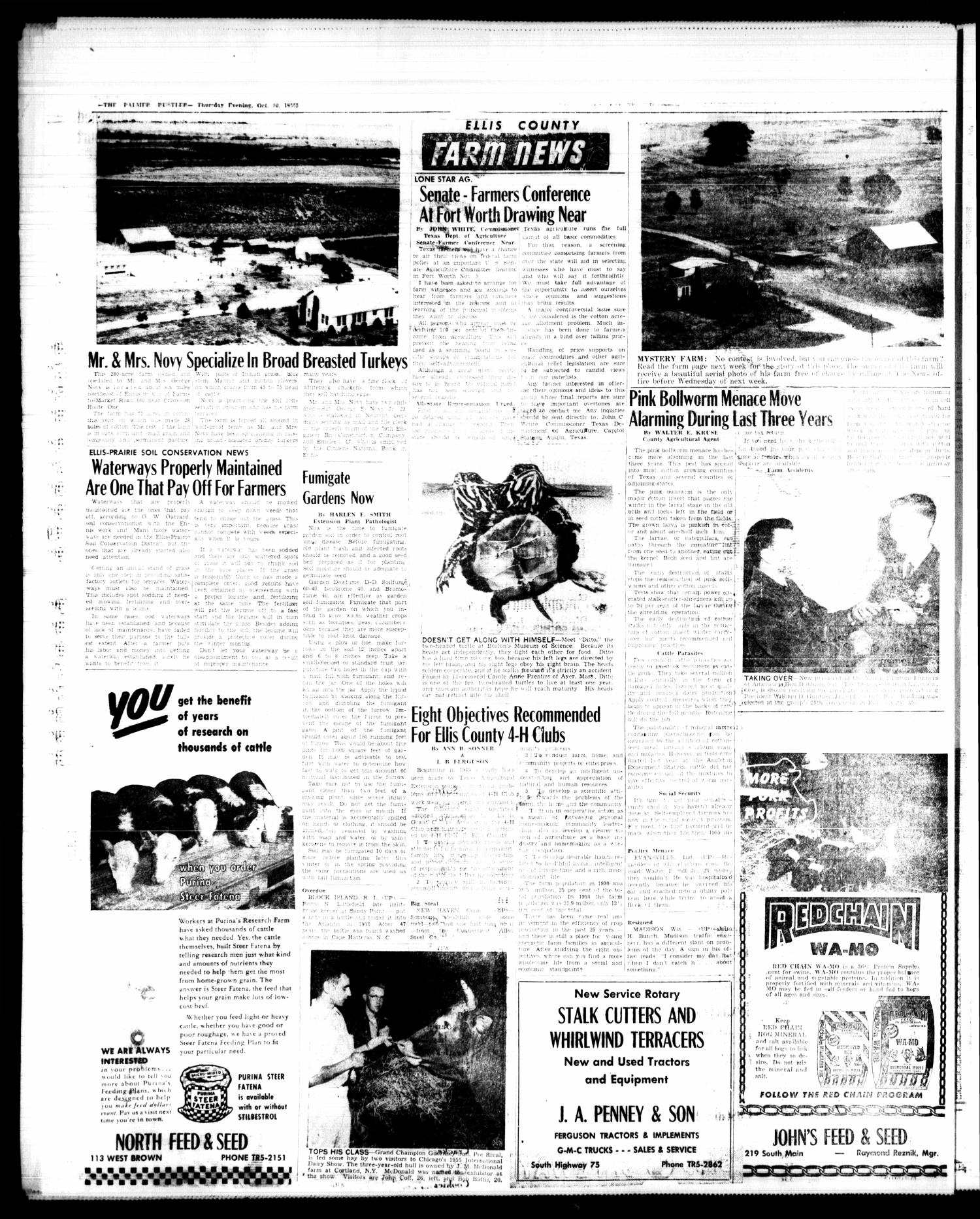 The Palmer Rustler (Palmer, Tex.), Vol. 30, No. 42, Ed. 1 Thursday, October 20, 1955                                                                                                      [Sequence #]: 4 of 6