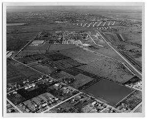 Primary view of object titled '[Aerial View of Groves]'.
