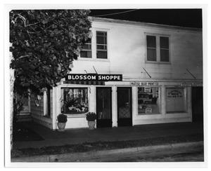 Primary view of object titled '[Blossom Shoppe and Matise Blue Print Company]'.