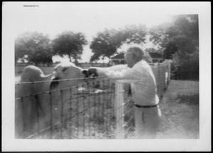 Primary view of object titled '[Albert Peyton George feeding a white Brahma over a wire fence]'.
