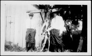 Primary view of object titled '[Albert Peyton George and an unidentified man with a trussed deer and turkey]'.