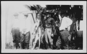 Primary view of object titled '[Albert Peyton George and three other men posed with trussed deer]'.