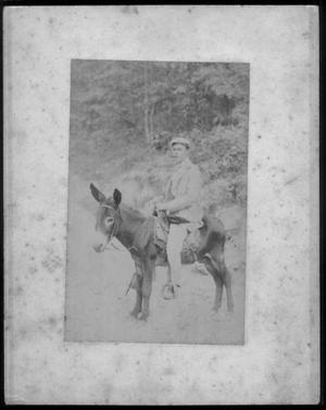 Primary view of object titled '[Albert Peyton George smoking a cigar astride a small mule]'.