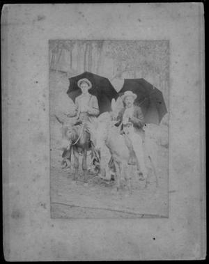 Primary view of object titled '[Albert Peyton George and an unidentified man astride saddled mules]'.