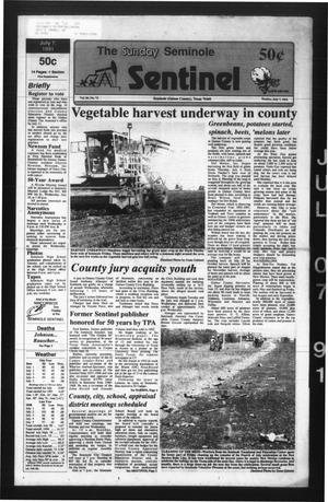 Primary view of object titled 'The Seminole Sentinel (Seminole, Tex.), Vol. 84, No. 72, Ed. 1 Sunday, July 7, 1991'.