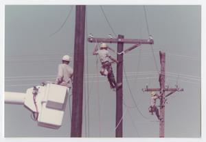 Primary view of object titled '[Linemen working on electrical poles]'.