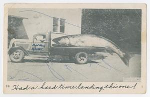 Primary view of object titled '[Postcard from Mrs. Davis to Miss Sandy Davis, July 13, 1956]'.