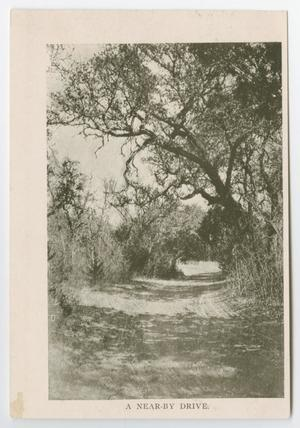 Primary view of object titled '[Postcard of Cibolo Canyon and Nearby Drive, Boerne, Texas]'.