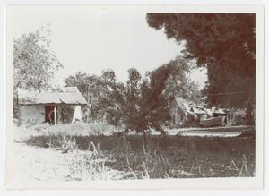 Primary view of object titled '[Photograph of Abandoned Shacks in Old Tusculum]'.