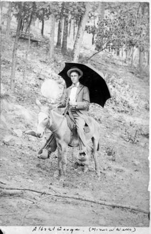 Primary view of object titled '[A.P. George as a young man, riding a saddled mule]'.