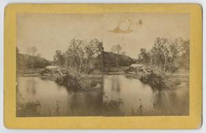 Primary view of [A View of the Comal River]