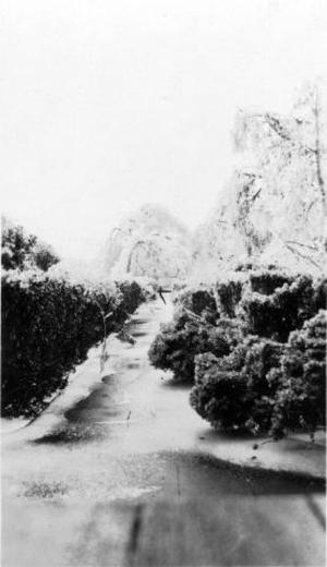Primary view of object titled '[The ice covered driveway leading to the George house]'.