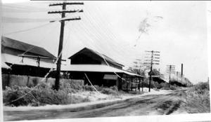 Primary view of object titled '[A dirt road lined with snow and telephone lines weighted down with ice]'.