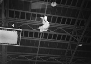[Person Doing Gymnastics]