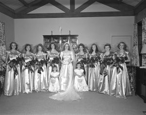 [Portrait of a Bride and Her Wedding Party]