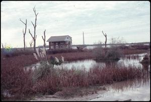Primary view of object titled '[Baytown Home Affected by Subsidence]'.
